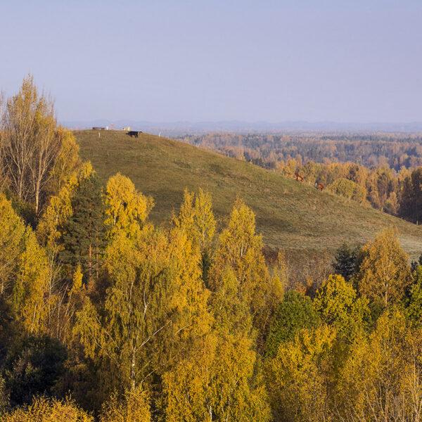 Drusku kalns
