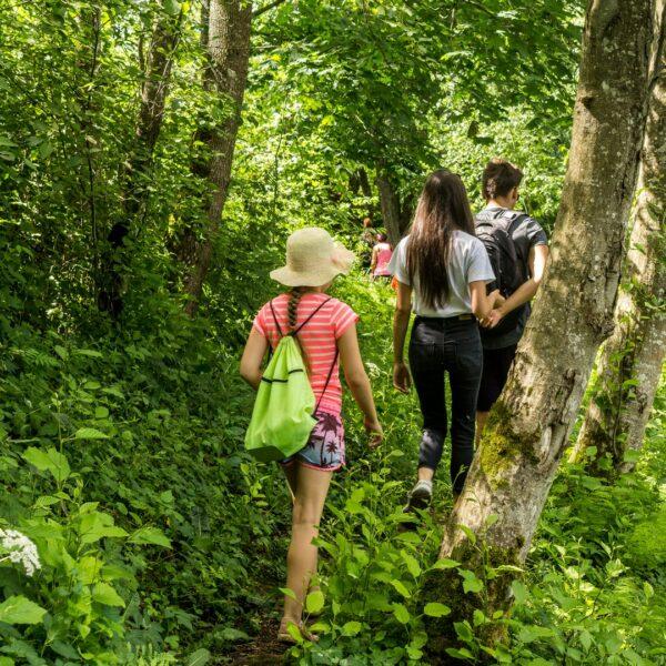 Ilgājs – Money Stone Trail in Veclaicene