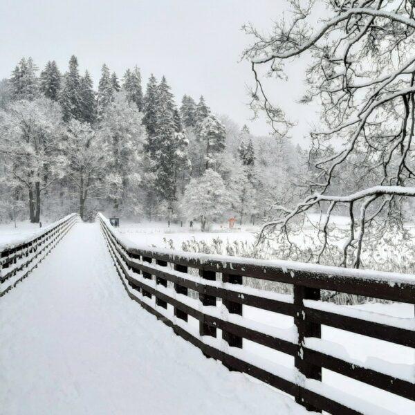 Tempļakalna ielas gājēju tilts, ziema