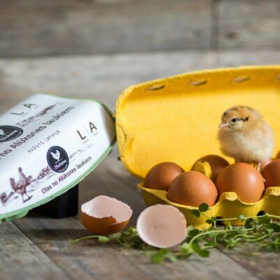 Olas no Alūksnes laukiem
